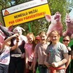 Rīgas Kristīgās vidusskolas dabas zinību pulciņš piedalās Meža ABC 2018